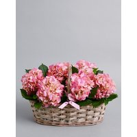 Hydrangea Basket (Available for delivery from 21st March 2019)