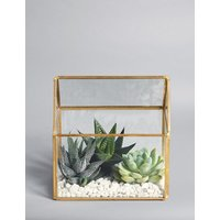 Succulent Glass Terrarium Planter (Available for delivery from 29th December 2018)