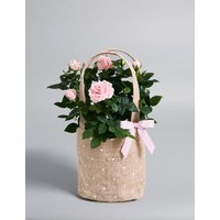 Pink Rose Gift Bag (Available for delivery from 21st March 2019)