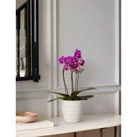 M&S Miniature Purple Cascade Orchid Ceramic