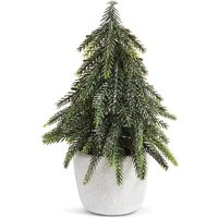 Table Top 20cm Fir Tree