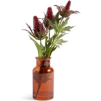 Thistles in Bottle Vase