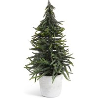 Table Top 50cm Fir Tree