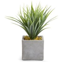 Grass Plant in Slate Pot