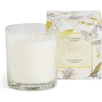 Grapefruit & Ginger Boxed Candle