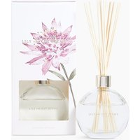 Lily & Cut Stems 100ml Diffuser