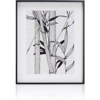 Bamboo Illustration Wall Art