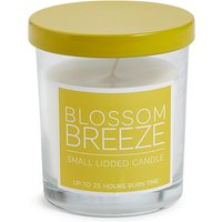 Blossom Breeze Scented Candle