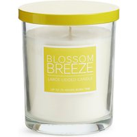 Blossom Breeze Large Scented Candle