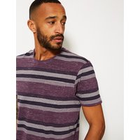 M&S Collection Pure Cotton Striped Crew Neck T-Shirt