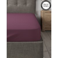 Pure Egyptian Cotton 230 Thread Count Fitted Sheet with StayNEW