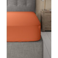Pure Egyptian Cotton 230 Thread Count Deep Fitted Sheet with StayNEW