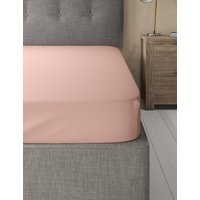 Cotton Rich Percale Single Fitted Sheet