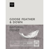 Goose Feather & Down 4.5 Tog Duvet white