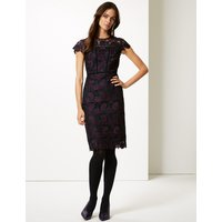 M&S Collection Lace Cap Sleeve Bodycon Dress