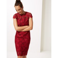 M&S Collection Lace Cap Sleeve Bodycon Midi Dress