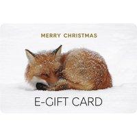 Christmas Fox E-Gift Card