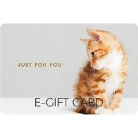 Kitten E-Gift Card