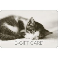 Cute Kitten E-Gift Card