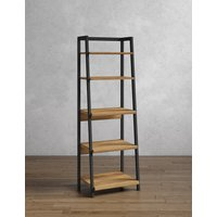 Baltimore Storage Ladder