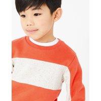 Cotton Rich Colourblock Sweatshirt (2-7 Years)