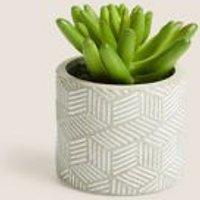 M&S Artificial Mini Succulent in Concrete Pot - 1SIZE - Green, Green