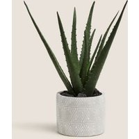 M&S Artificial Medium Aloe Plant in Pot - 1SIZE - Green, Green