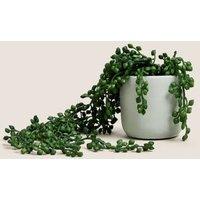 M&S Artificial Mini Trailing Plant in Pot - 1SIZE - Green, Green