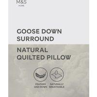MandS Goose Down Medium Surround Pillow - 1SIZE - White, White