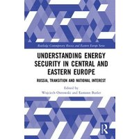 Image of Understanding Energy Security in Central and Eastern Europe: Russia, Transition and National Interest (Routledge Contemporary Russia and Eastern Europe Series)