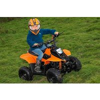 Junior Quad Bike Safari Picture