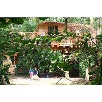Three Night Family Tree House Escape