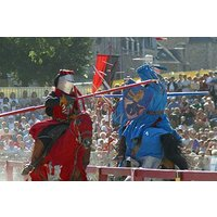 Medieval Jousting Experience Picture