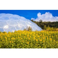 Eden Project Entrance For Two Picture