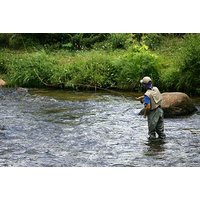 Deluxe Fly Fishing Picture