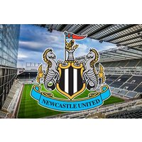 One Adult And One Child Tour Of St James' Park Picture