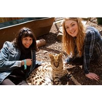 Half Day Animal Keeper Experience At Hoo Farm For Two Picture