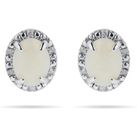 shop for 9ct White Gold Opal Dia Halo Stud Earrings. Earring Size 11mm x 9mm at Shopo