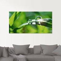Artland Glasbild Grüner Hintergrund mit Gras
