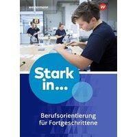 Stark in ... Themenhefte. Arbeitsheft Berufsorientierung 2: für Fortgeschrittene