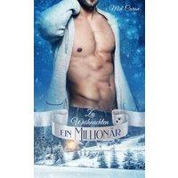 Zu Weihnachten ein Millionär (eBook, ePUB)