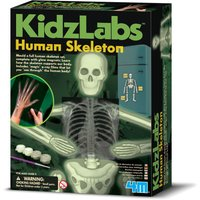 4M Kidz Labs Human Skeleton