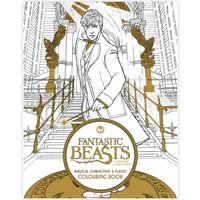 Fantastic Beasts Magical Places & Characters Colouring Book