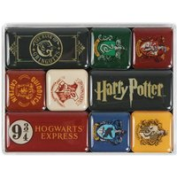 Harry Potter Houses Epoxy Magnet Set