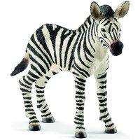 Schleich Zebra Foal - Schleich Gifts