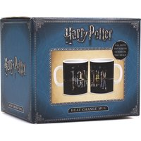 Harry Potter Heat Changing Horcrux Mug