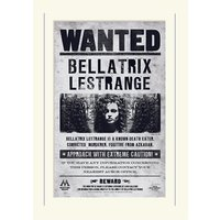 Harry Potter Bellatrix Wanted Loose Mounted Print
