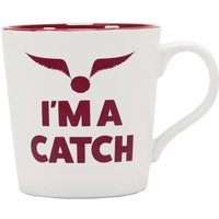 Harry Potter Quidditch Slogan Boxed Mug