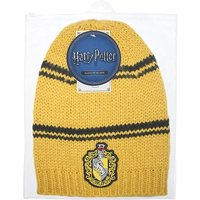 Harry Potter Long Slouchy Hat (Ravenclaw)