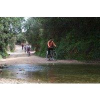 Kleingruppenabenteuer: Radfahren im Naturpark Ria Formosa